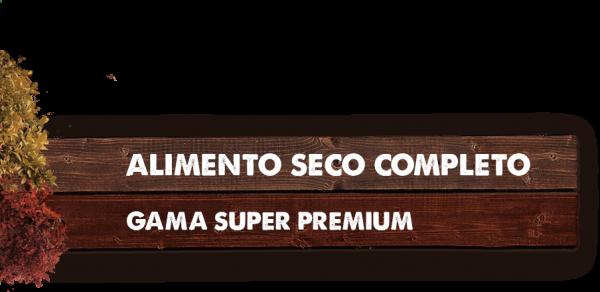 MADERA TITULO SUPER